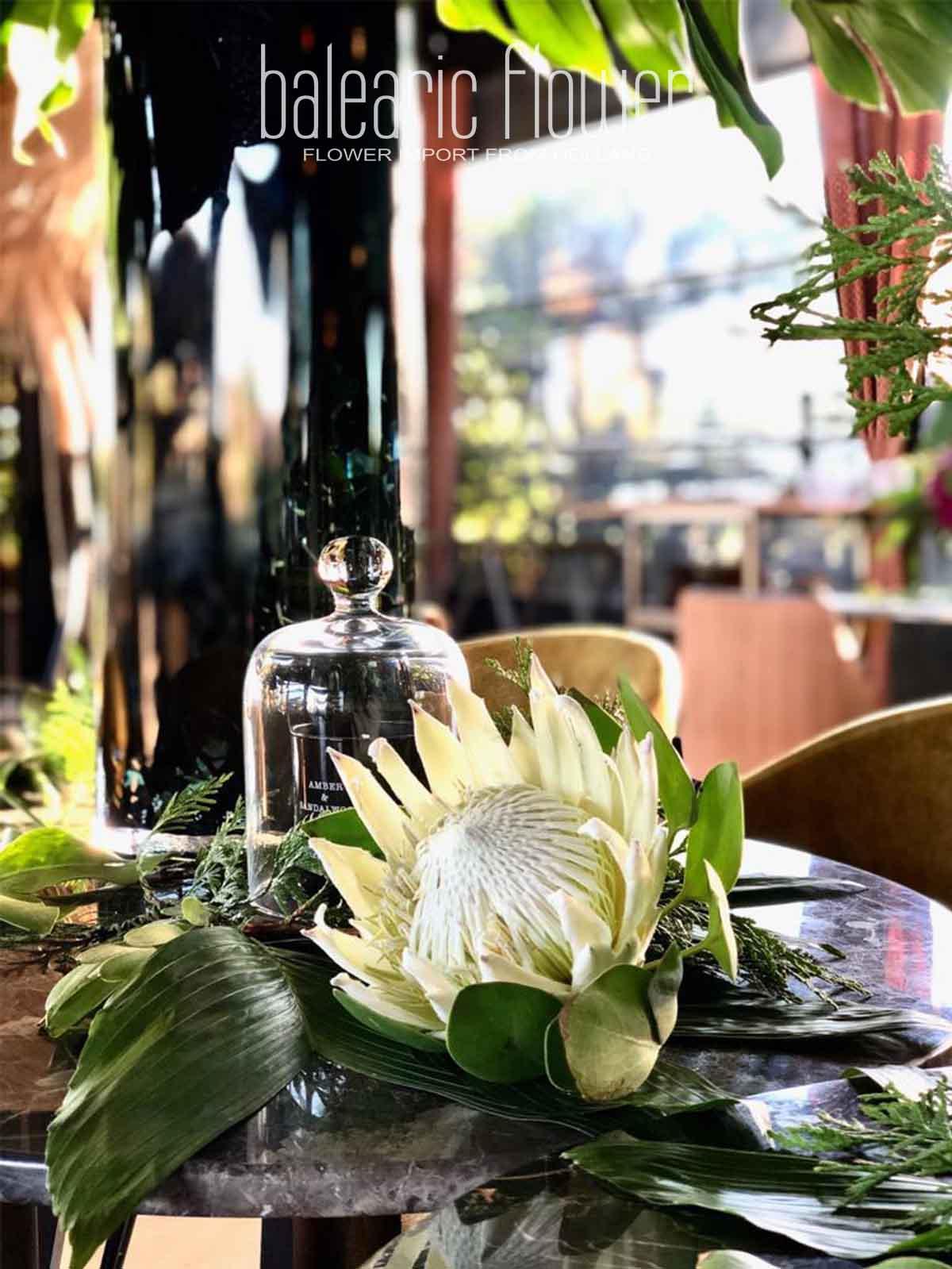 restaurant-hotel-flowers-ibiza